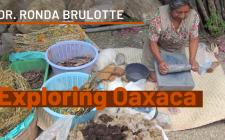 Exploring Oaxaca